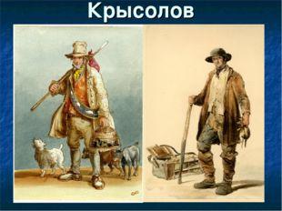 Крысолов Профессия крысолова появилась еще в Средневековье, когда крысы были