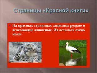На красных страницах записаны редкие и исчезающие животные. Их осталось очень