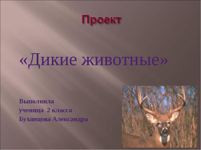 «Дикие животные» Выполнила ученица 2 класса Буханцова Александра