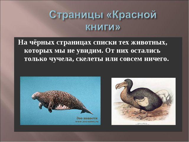 На чёрных страницах списки тех животных, которых мы не увидим. От них осталис...