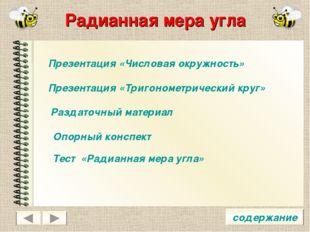 Радианная мера угла содержание Презентация «Числовая окружность» Презентация