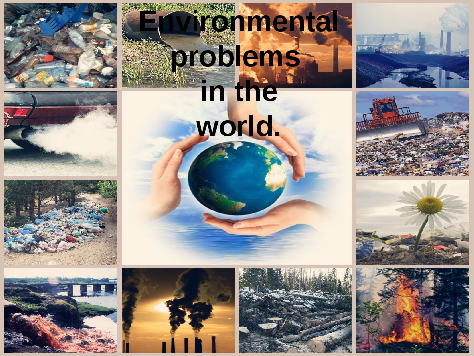 enviromental promlems Environmental problems and solutions may 25, 2012march 8, 2013 - by raham ghaffar - 6 the list of environmental problems and solutions presented in this write-up should throw some light on how.