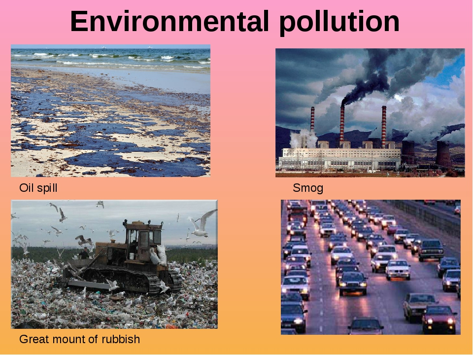 environment pollution and human activity The effects of human activities on environment large scale pollution  or chemicals are incredibly varied they can arise from both human activity and natural.