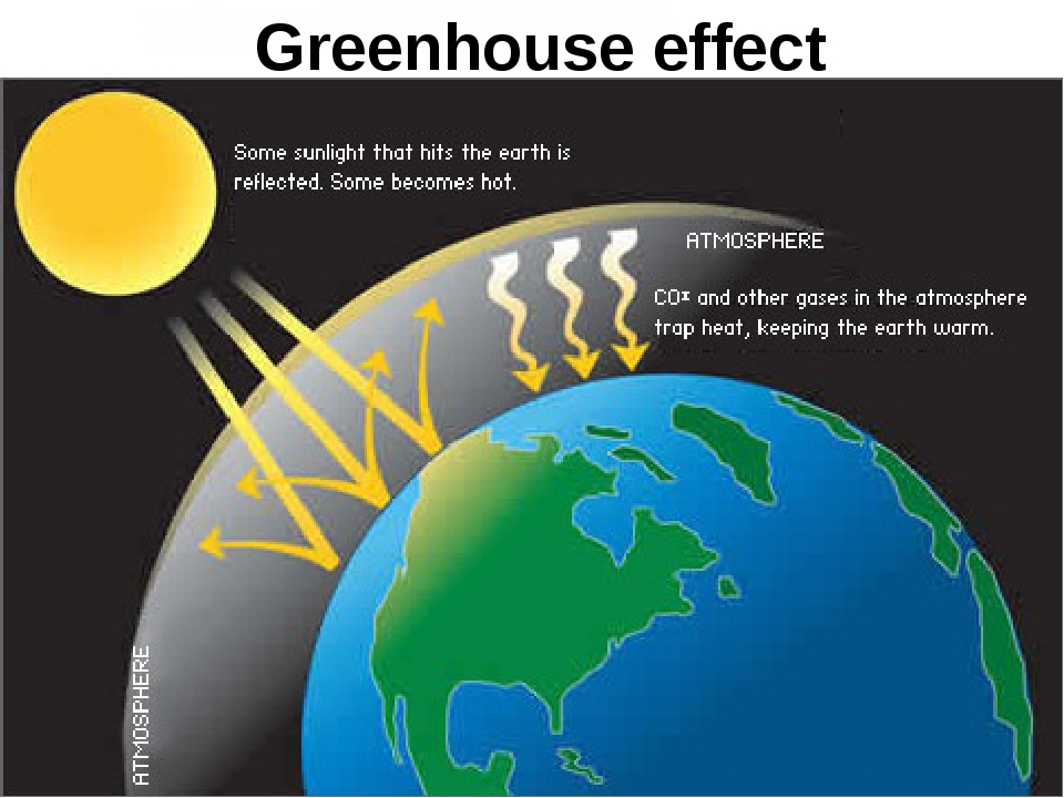green house effect essays in hindi