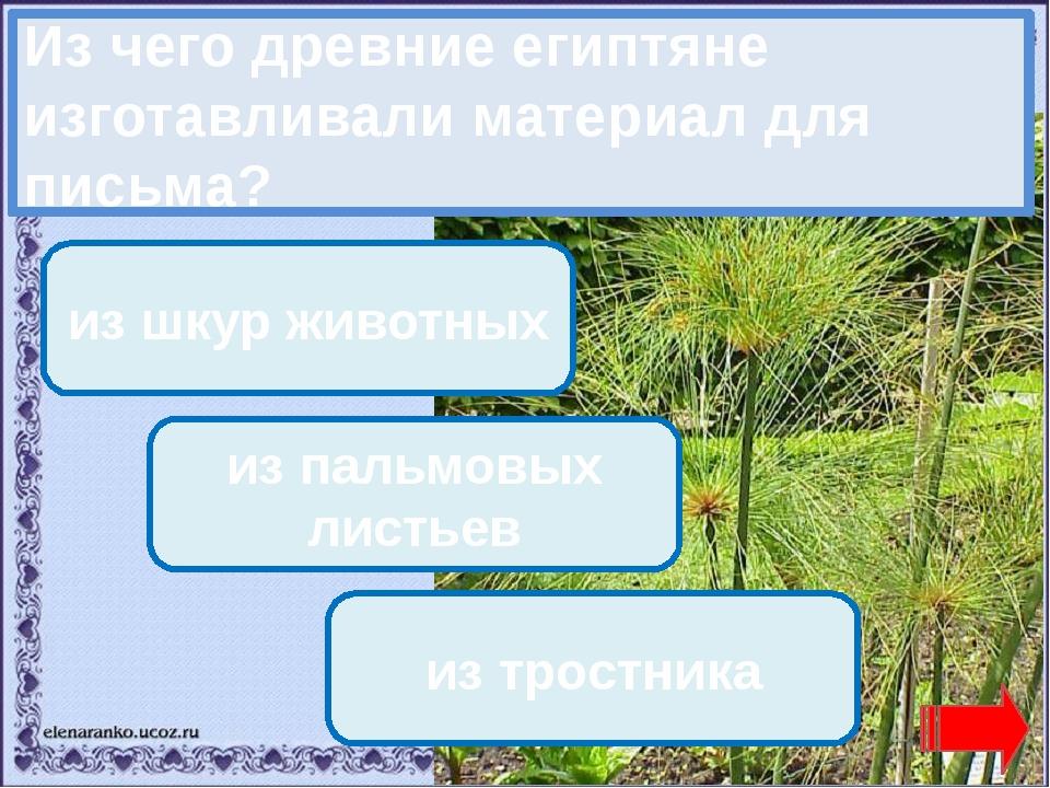 Переход хода! Переход хода! из шкур животных из пальмовых листьев Молодец! из...