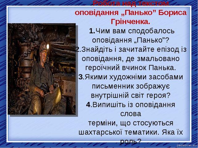 """Робота над текстом оповідання """"Панько"""" Бориса Грінченка. 1.Чим вам сподобало..."""