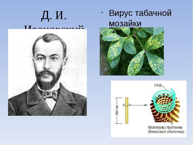 Д. И. Ивановский Вирус табачной мозайки