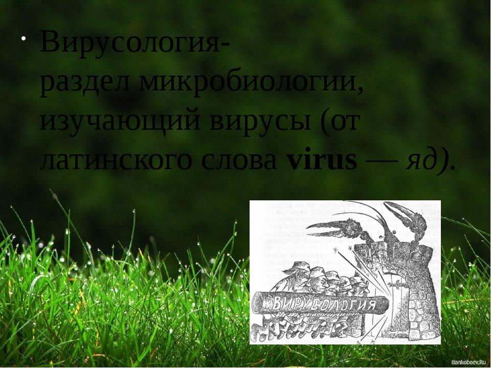 Вирусология- разделмикробиологии, изучающийвирусы(от латинского словаviru...