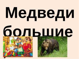 Медведи большие, страшные, лохматые. Вывод. По научным описаниям и рассмотре