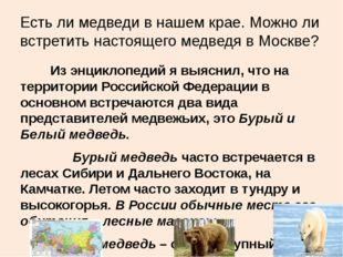 Есть ли медведи в нашем крае. Можно ли встретить настоящего медведя в Москве?