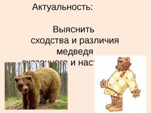 Актуальность: Выяснить сходства и различия медведя сказочного и настоящего