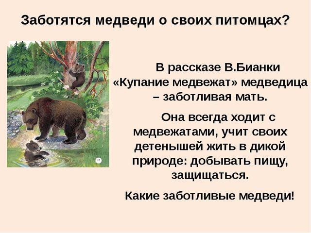 Заботятся медведи о своих питомцах? В рассказе В.Бианки «Купание медвежат» ме...