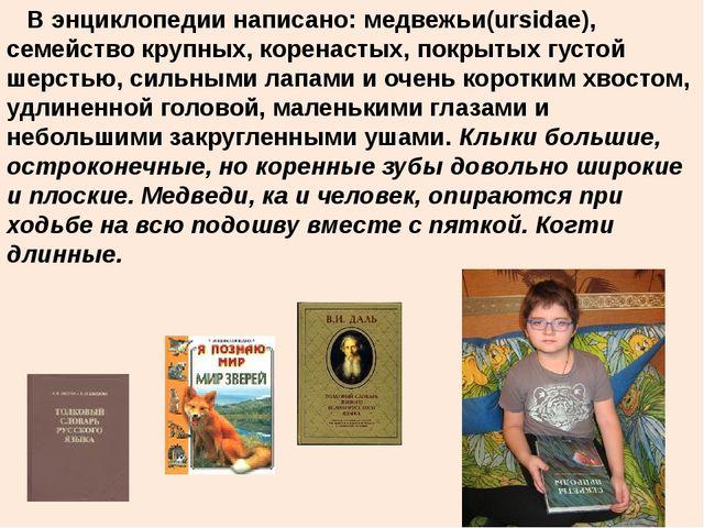 В энциклопедии написано: медвежьи(ursidae), семейство крупных, коренастых, п...