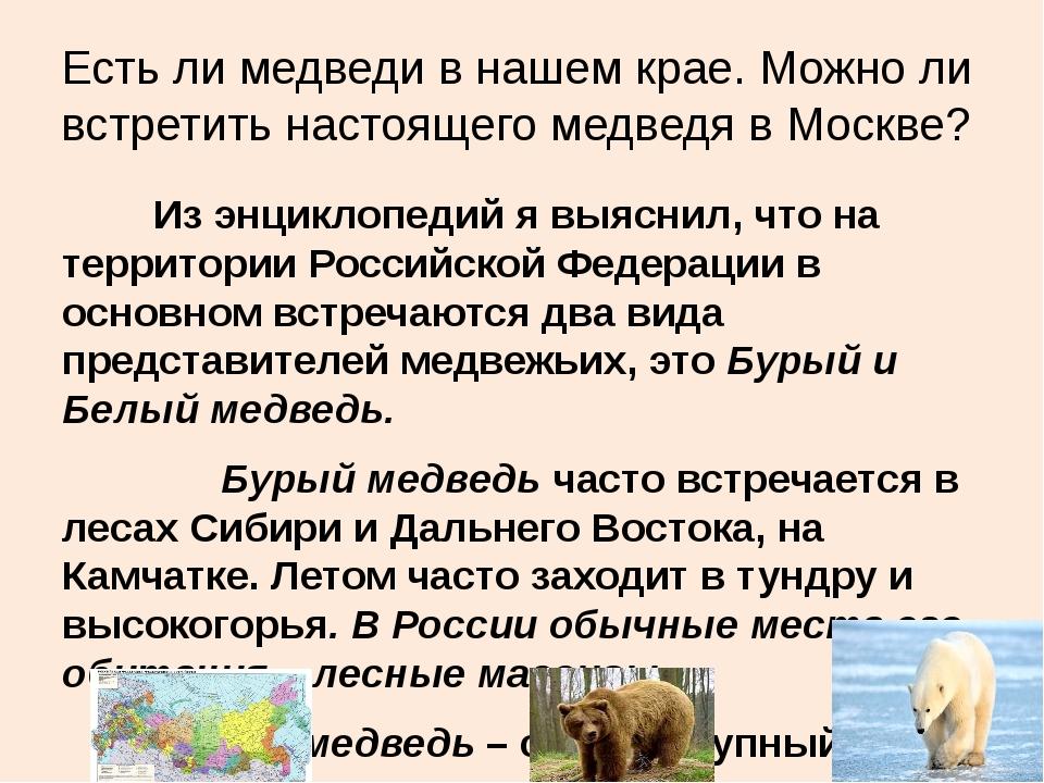 Есть ли медведи в нашем крае. Можно ли встретить настоящего медведя в Москве?...