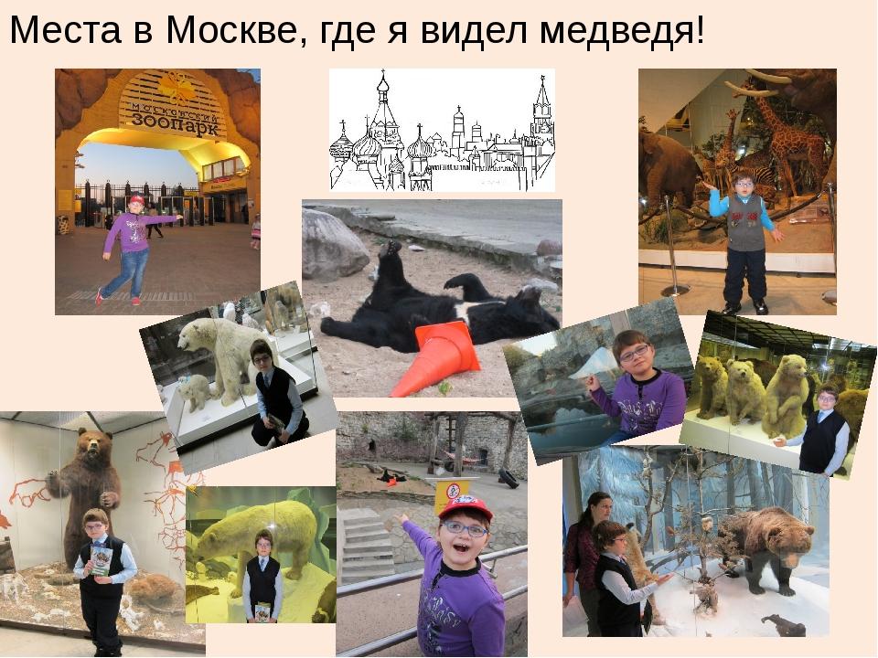 Места в Москве, где я видел медведя!
