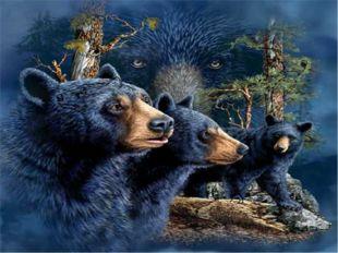 Сколько животных и их образов скрыл в своей картине Стивен Гарднер?