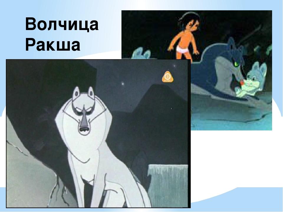 Волчица Ракша