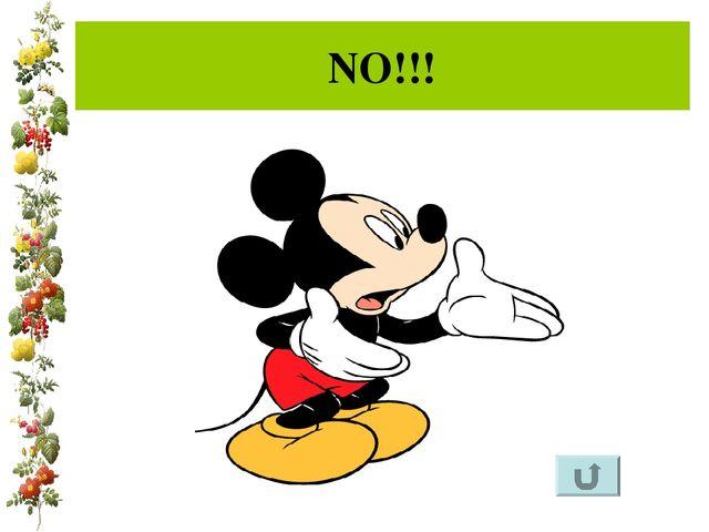 NO!!!