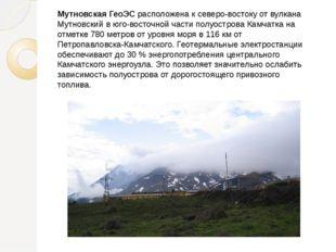 Мутновская ГеоЭС расположена к северо-востоку от вулкана Мутновский в юго-вос