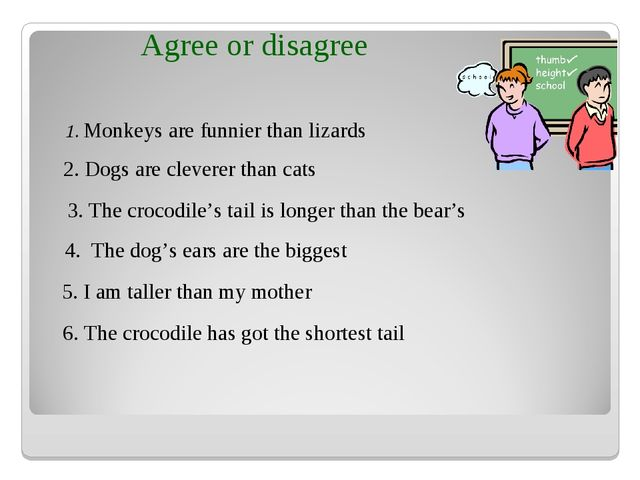 1. Monkeys are funnier than lizards 2. Dogs are cleverer than cats 3. The cro...