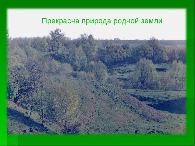 Прекрасна природа родной земли