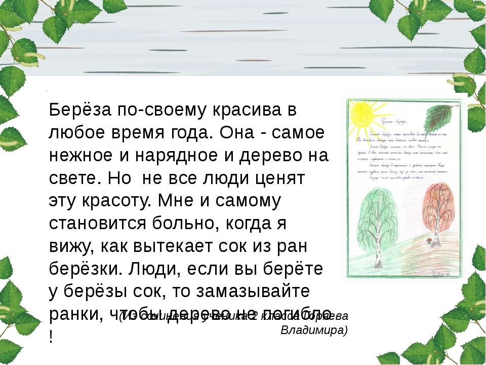 (Из сочинения ученика 2 класса Горяева Владимира) Берёза по-своему красива в...