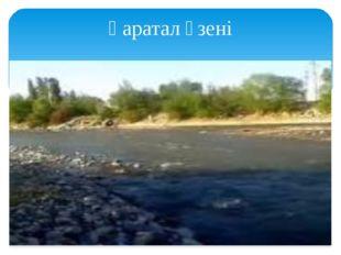 Қаратал өзені