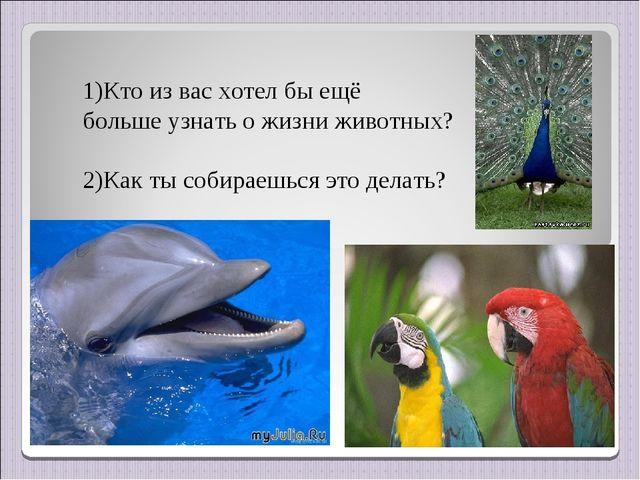 Кто из вас хотел бы ещё больше узнать о жизни животных? 2)Как ты собираешься...