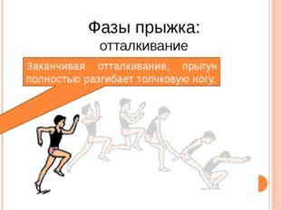 Заканчивая отталкивание, прыгун полностью разгибает толчковую ногу. Фазы прыж