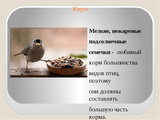 Корм Мелкие, нежареные подсолнечные семечки - любимый корм большинства видов...