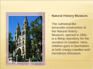 Natural History Museum. The cathedral-like terracotta construction of the Nat