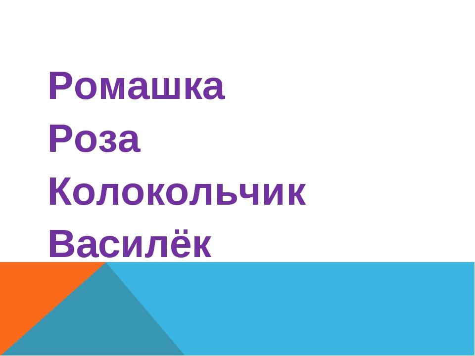 Ромашка Роза Колокольчик Василёк