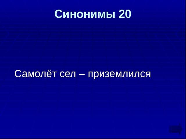 Синонимы 20 Самолёт сел – приземлился