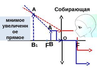 О F Собирающая линза F А В В1 А1 мнимое увеличенное прямое