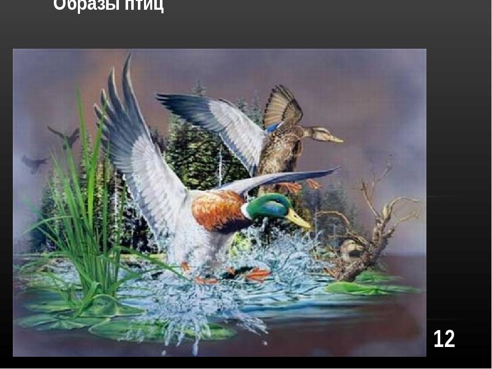12 Образы птиц
