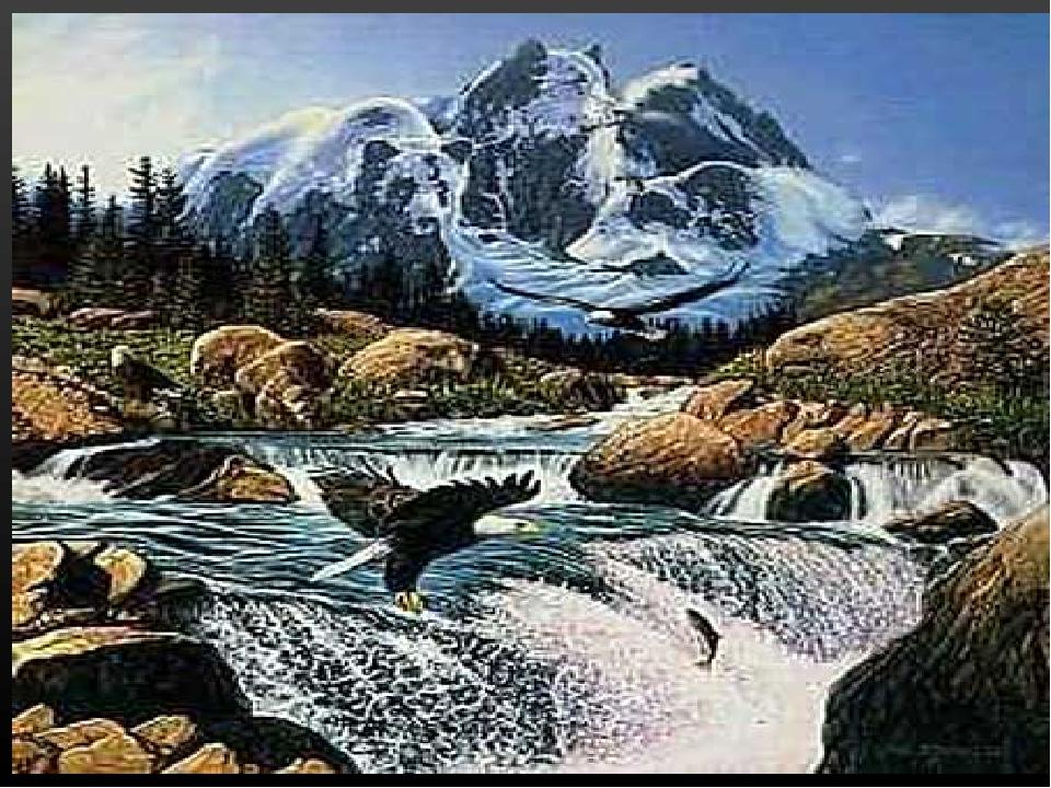 Сколько образов представителей живой природы скрыто в данной картине?