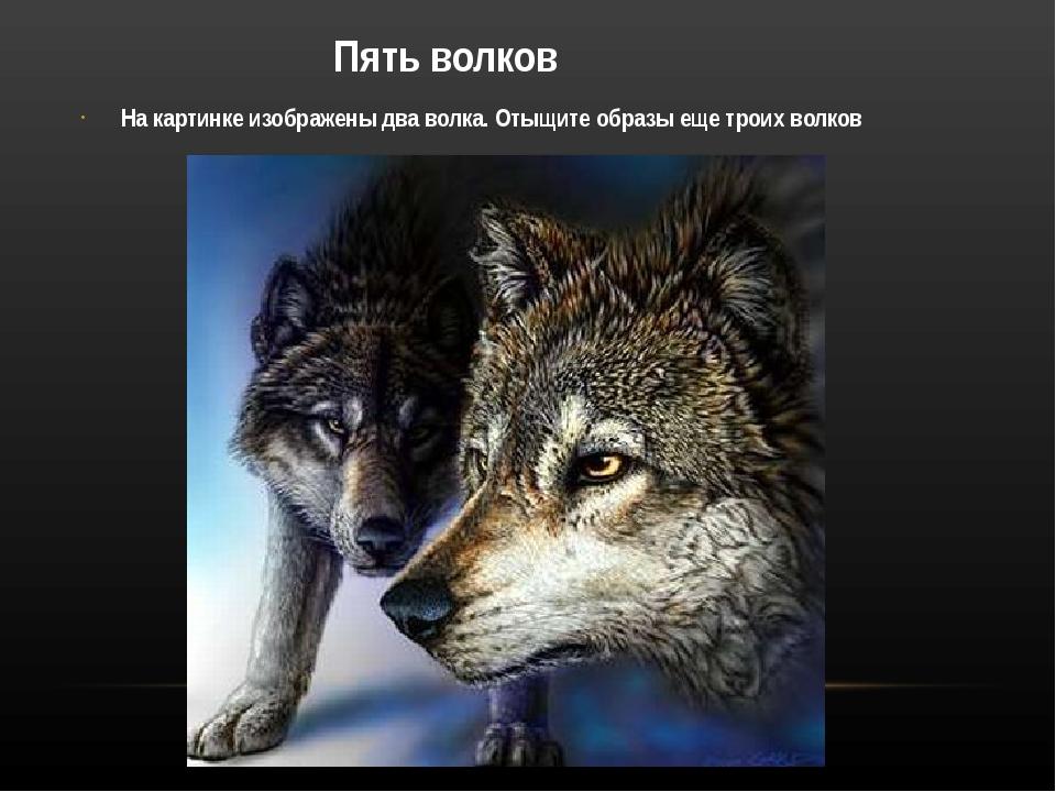 Пять волков На картинке изображены два волка. Отыщите образы еще троих волков