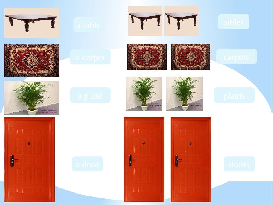 a table a carpet a plant a door tables carpets plants doors