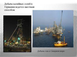 Добыча калийных солей в Германии ведется шахтным способом ДобычагазавСевер