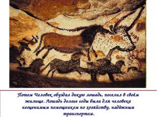 Потом Человек обуздал дикую лошадь, поселил в своём жилище. Лошадь долгие год