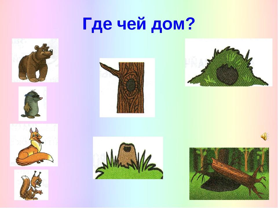 дальнейшем пары картинки и иллюстрации с изображением жилища животных костюмов