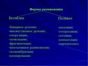 Формы размножения Бесполое бинарное деление; множественное деление; споруляц