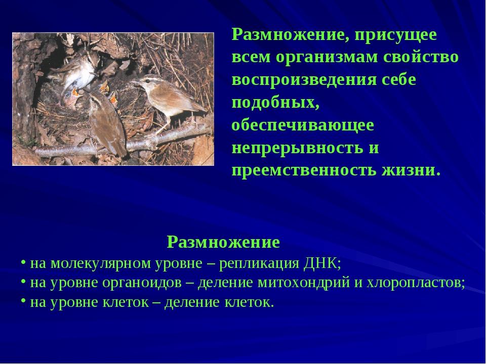 Размножение, присущее всем организмам свойство воспроизведения себе подобных...