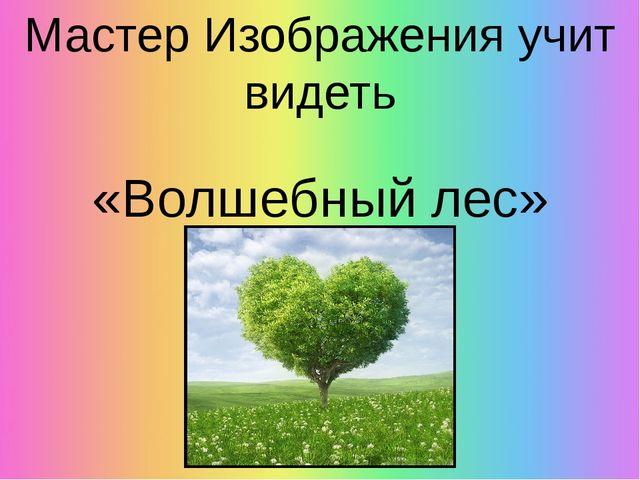 Мастер Изображения учит видеть «Волшебный лес»