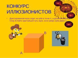 КОНКУРС ИЛЛЮЗИОНИСТОВ Дрессированная муха сидит на кубе в точке А, а должна п
