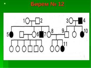 Бирем № 12