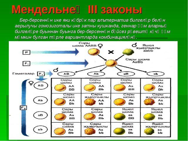 Мендельнең III законы Бер-берсеннән ике яки күбрәк пар алътернатив билгеләр б...
