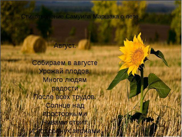 Стихотворение Самуила Маршака о лете. Август. Собираем в августе Урожай плодо...