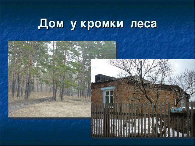 Дом у кромки леса