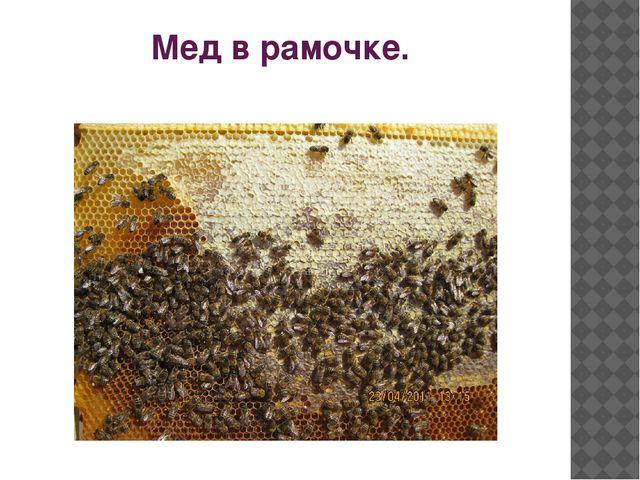 Мед в рамочке.